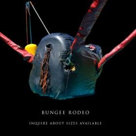 Bungee Rodeo